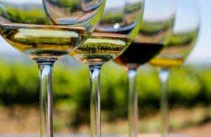 soave-wine-tasting