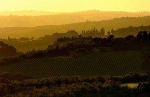 Chianti-Wine-Tasting
