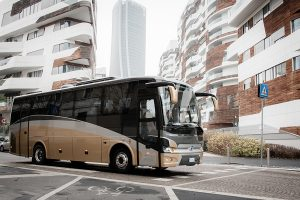 limobus_18_white_main