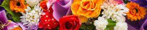 sanremo-flowers