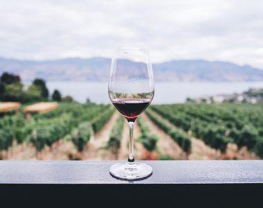 Vinitaly 2018, ready to taste new Italian wines?